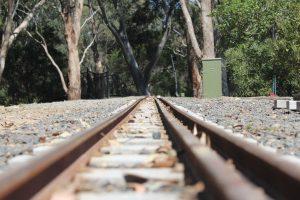 BHMSRS dual gauge track